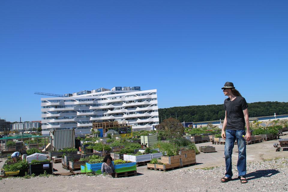 Городской сад на поддонах Орхус Дания