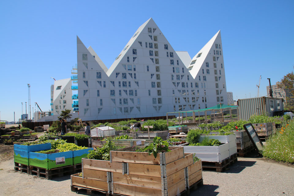 Urban gardening Aarhu Denamrk