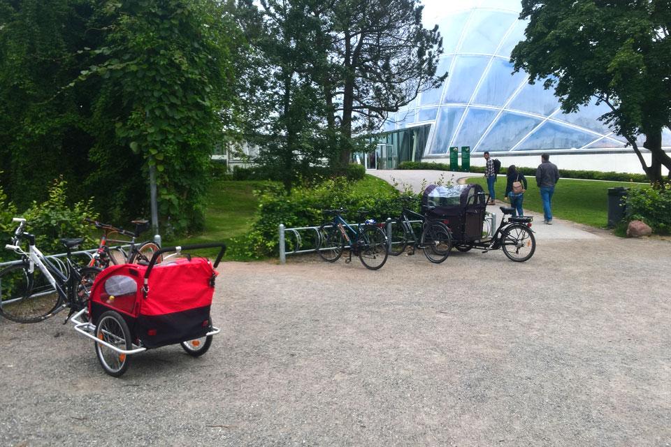Ботанический сад Орхус Дания