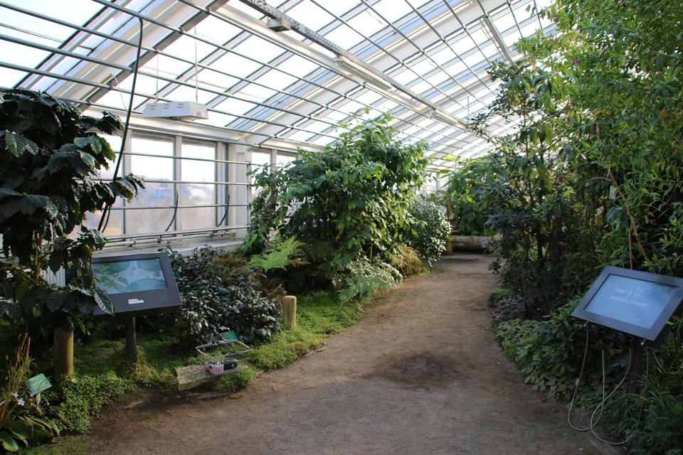Ботанический сад г. Орхуса.