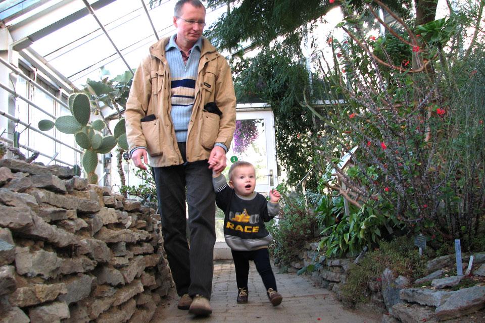 В старых теплицах ботанического сада