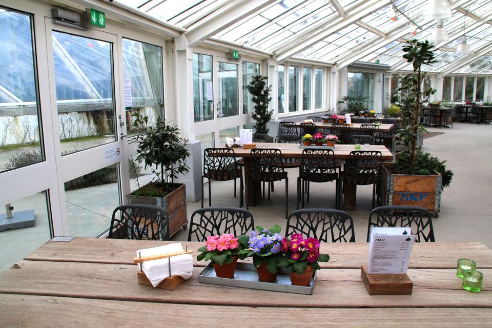 В теплицах ботанического сада