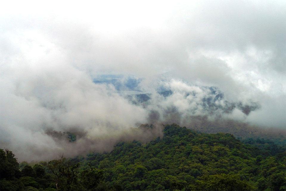 облака над горными тропическими лесами