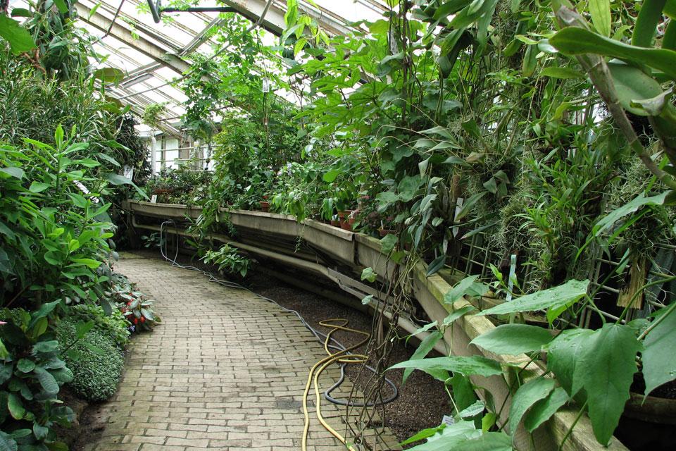 Ботаничесский сад в г. Орхус
