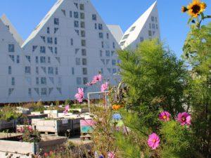 Городской сад на поддонах в Орхусе