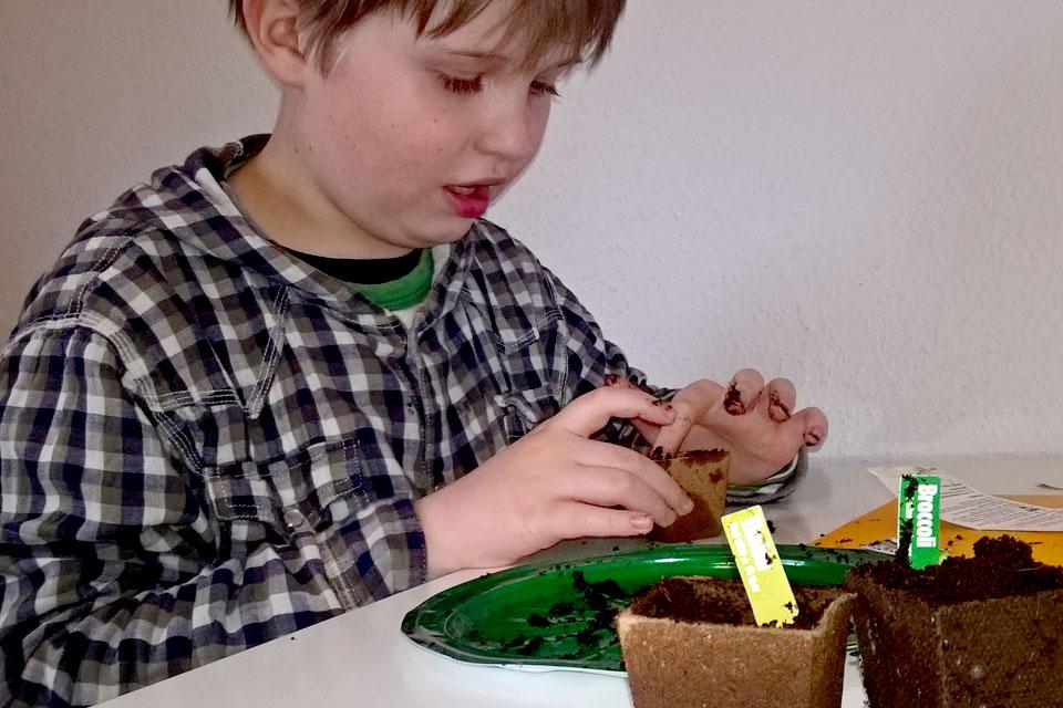 Мой сын сеет семена