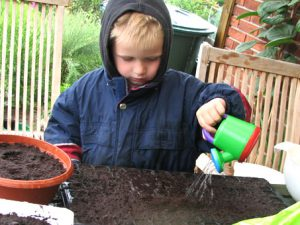 Огородные наборы для детских садов в Дании