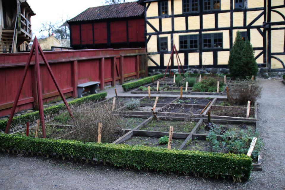 Аптекарские огороды во дворе старой аптеки музея Старый Город