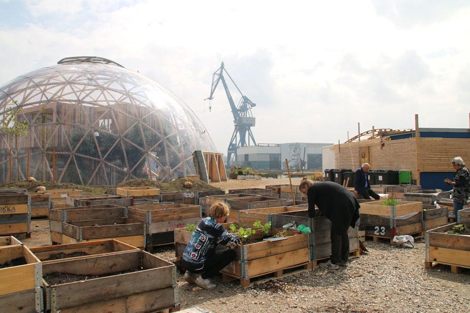 аждый житель Орхуса может за небольшую плату арендовать мини-огород