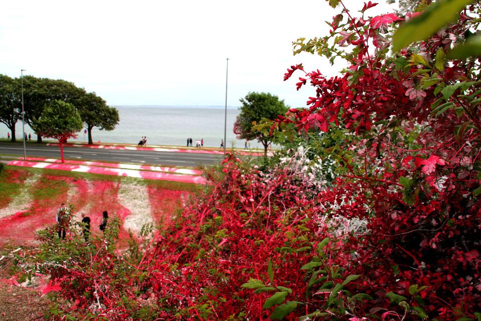 Катарина Гроссе разукрасила зеленый газон, тротуары, деревья и кусты