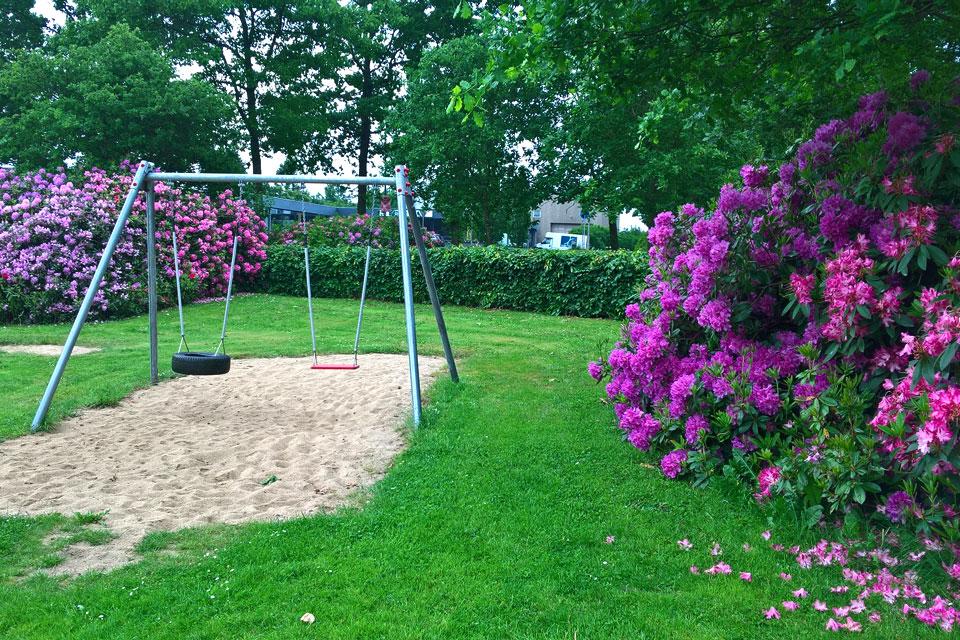 Детская площадка, окруженная цветущими рододендронами