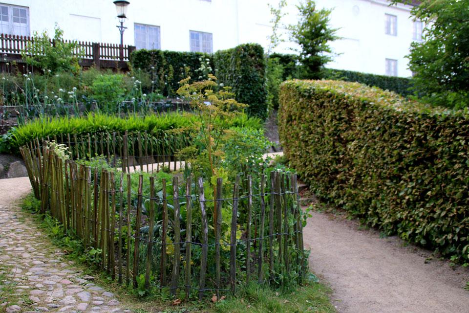 Огород за усадьбой, музей Старый Город