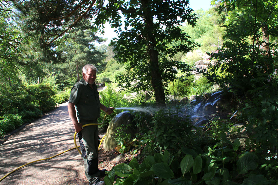 Садовник Якоб поливает растения