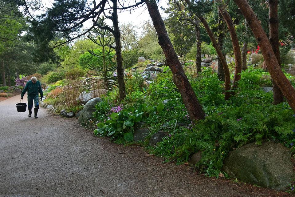 Поуль Эрик, бывший садовник ботанического сада