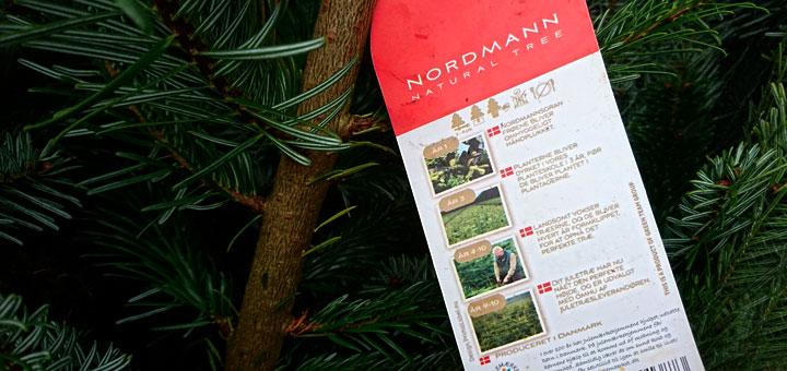 Датские елки или елочный бизнес в Данииwww.florapassionis.com