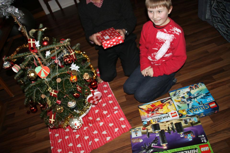 Рождественская елка из сада кавказская пихта