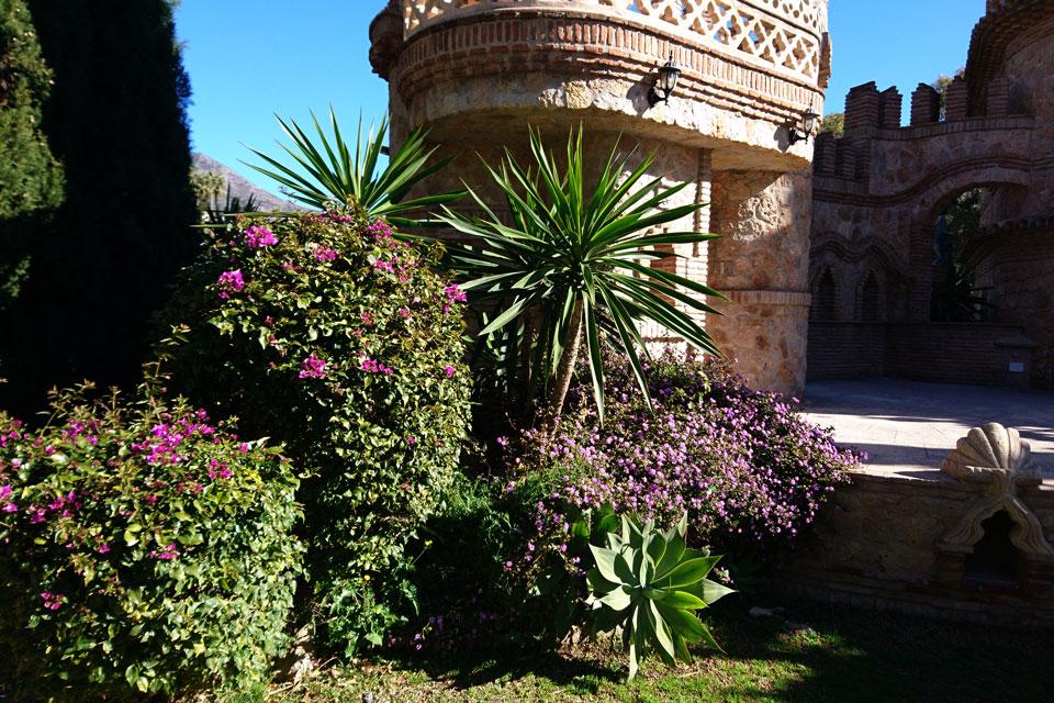 Бугенвиллии, агавы, юкки, лантаны и другие растения Америки украшают замок Коломарес