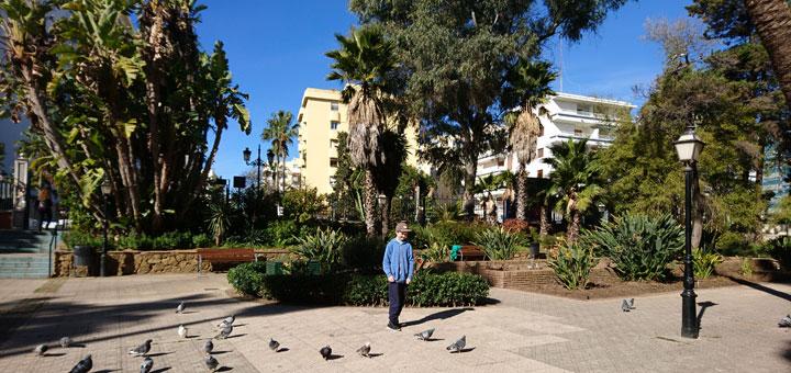 Парк КПарк Конституции Марбелья Constitution Park Marbella www.florapassionis.comонституции Марбелья Constitution Park Marbella www.florapassionis.com