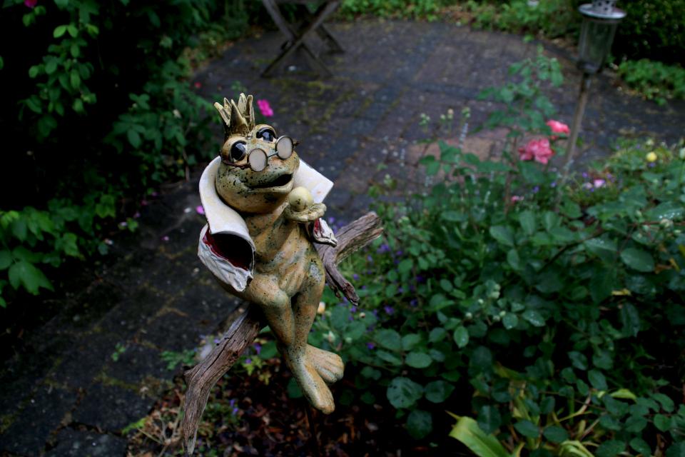 Коряги в украшении сада Йорк