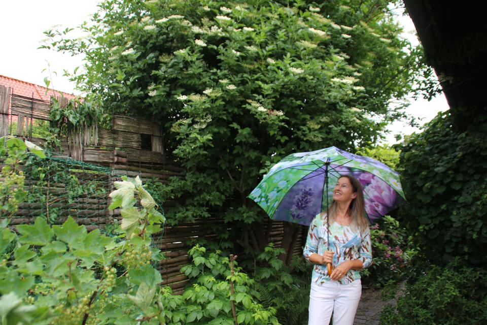 Датская писательница Патриция Катарина Йорк в своем саду возле старой бузины