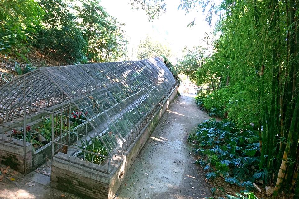 Старая теплица с экзотическими растениями в ботаническом саду Ла Консепсьон