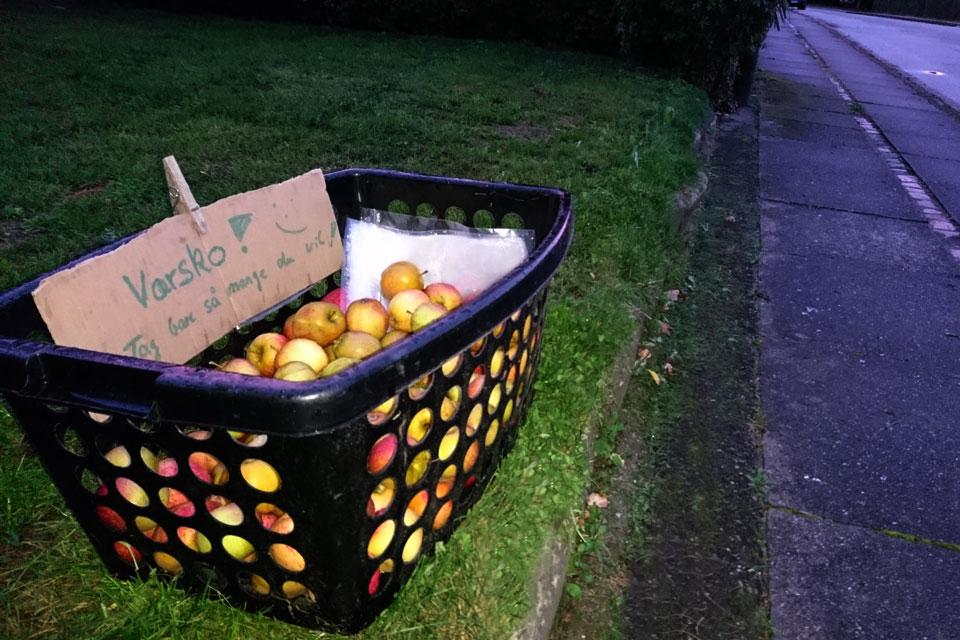 Яблоки для желающих