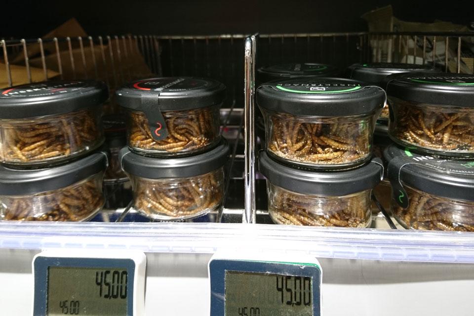 Экзотические закуски из личинок мучного жука