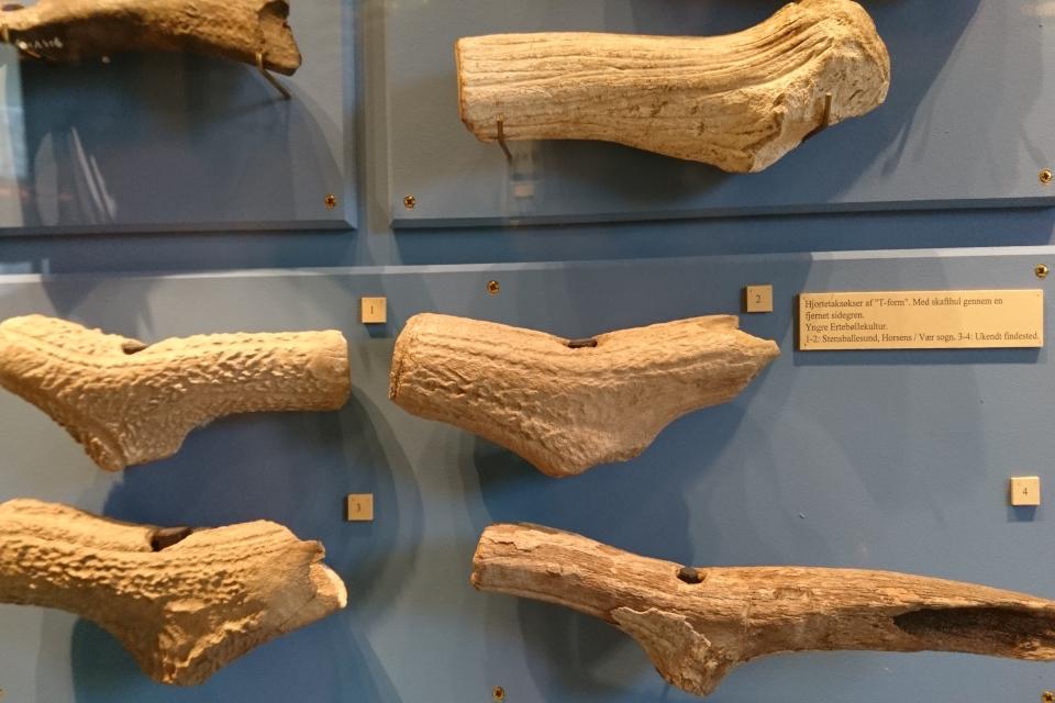 Рога оленя времен каменного века 5400 лет до н.э.- 3900 до н.э., найдены в захоронениях.