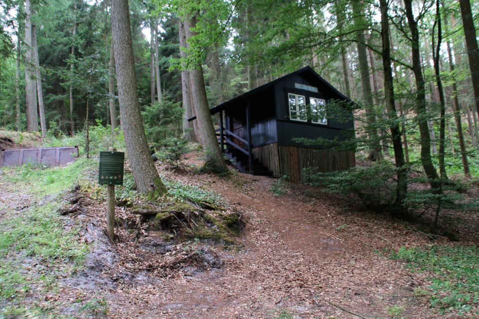 В частном лесу стоит табличка, на которой землевладелец указывает особые ограничения
