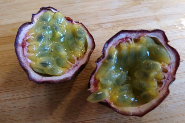 Пассифлора съедобная, Страстоцвет съедобный Passiflora edulis 16jan17 www.florapassionis.com