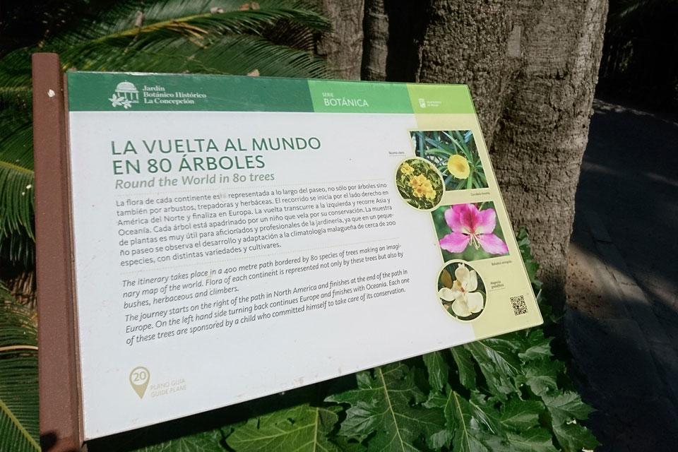 Вокруг света за 80 деревьев, Ботанический сад Ла Консепсьон Малага