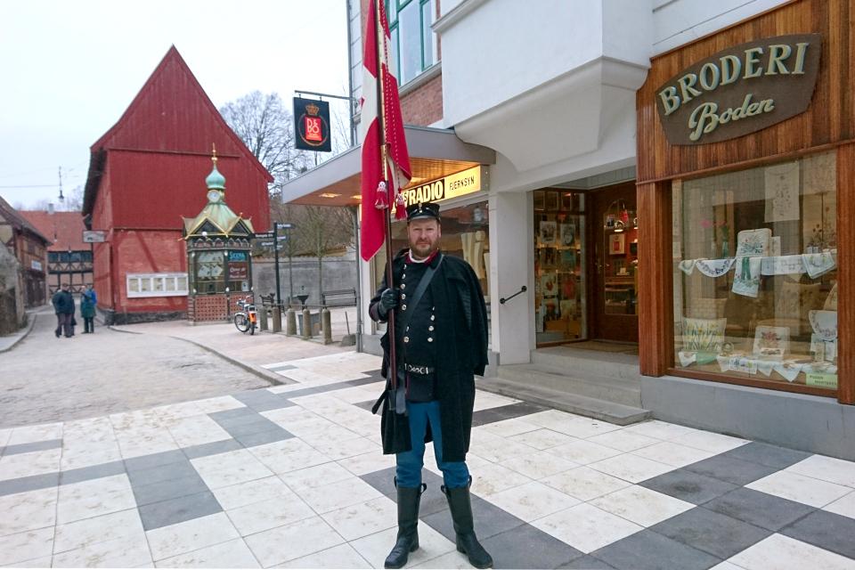 Флагоносец в костюме военной униформы датской армии с флагом Даннеброг