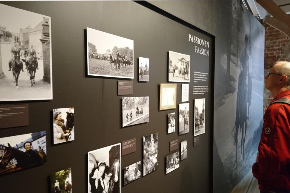 Фотографии, запечатлевшие Бенедикту с лошадьми