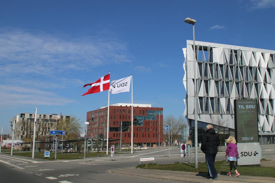 Флаг поднят возле Университета в Эсбьерг (SDU) по случаю дня рождения королевы