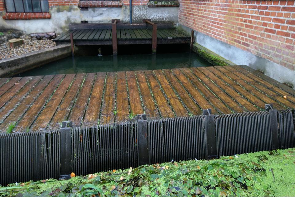 Старая плотина, где фильтруется вода, поступающая из озера