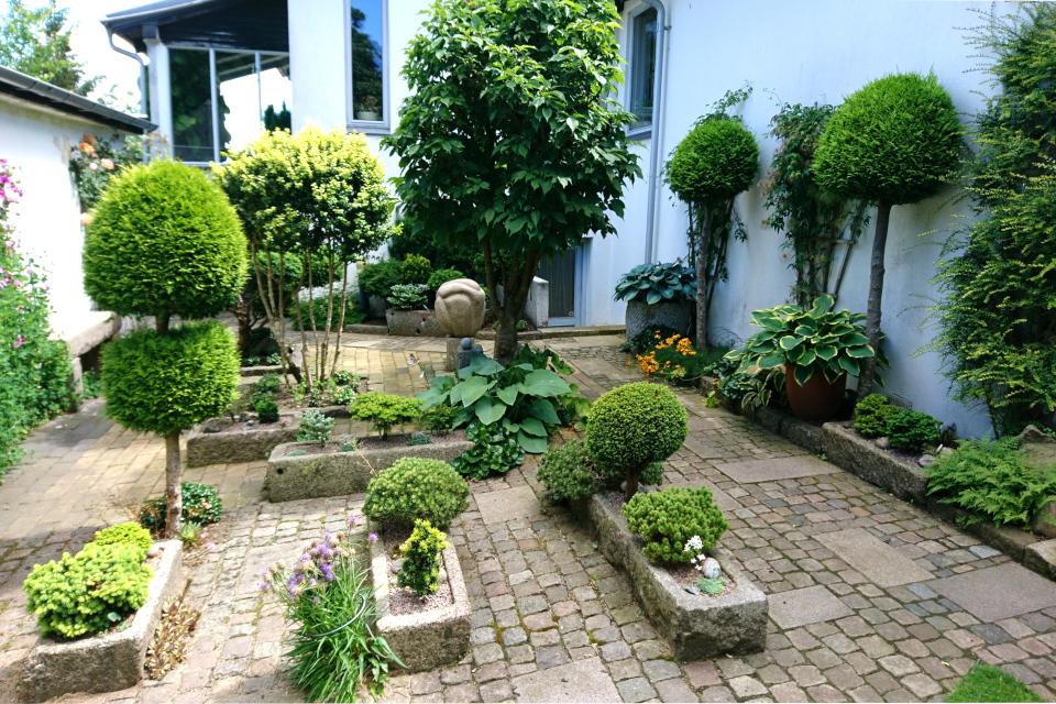 Коллекция миниатюрных хвойных деревьев 22 июн. 2019, сад Кирстен и Ингольф