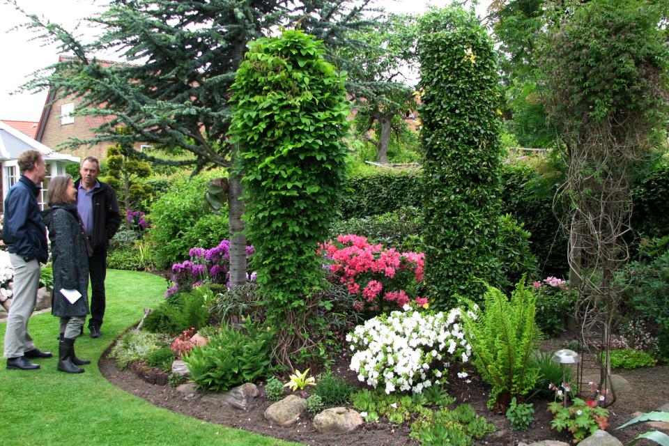 Штативы для вьющихся растений, как клематис и Акебия пятерная (лат. Akebia quinata)