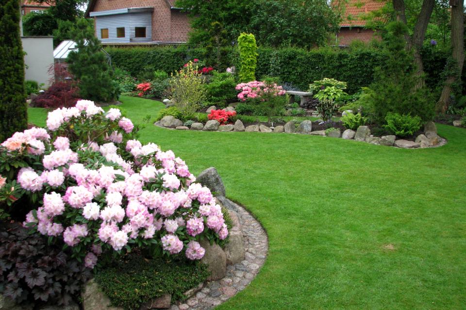 Цветущие клумбы с рододендронами и азалиями посреди газона
