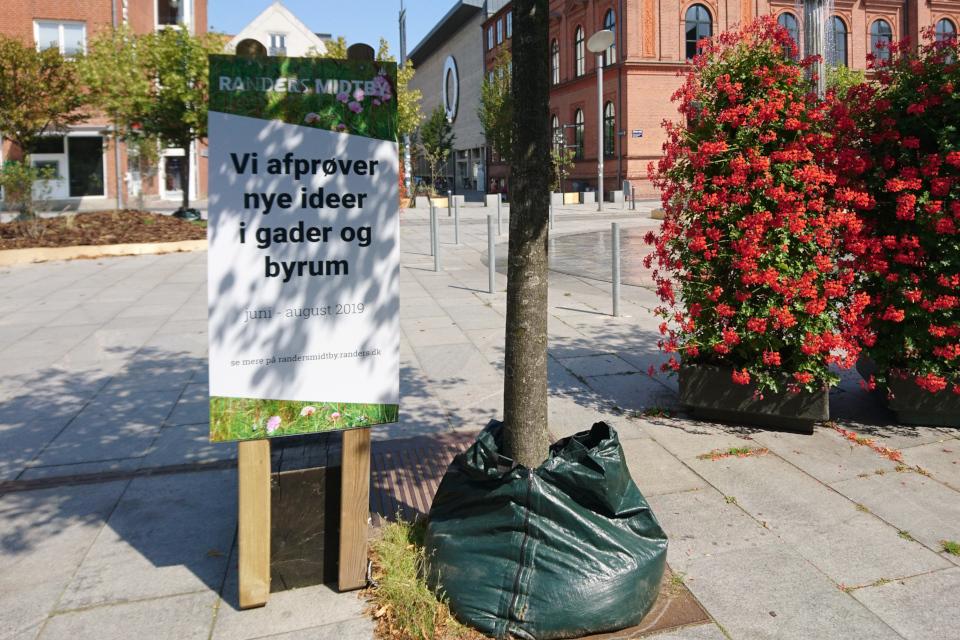 Табличка с описанием экспериментального проекта озеленения бульвара Остерпорт