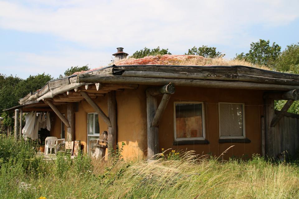 Экодом с зеленой крышей