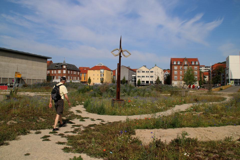 Природа Дании в центре города