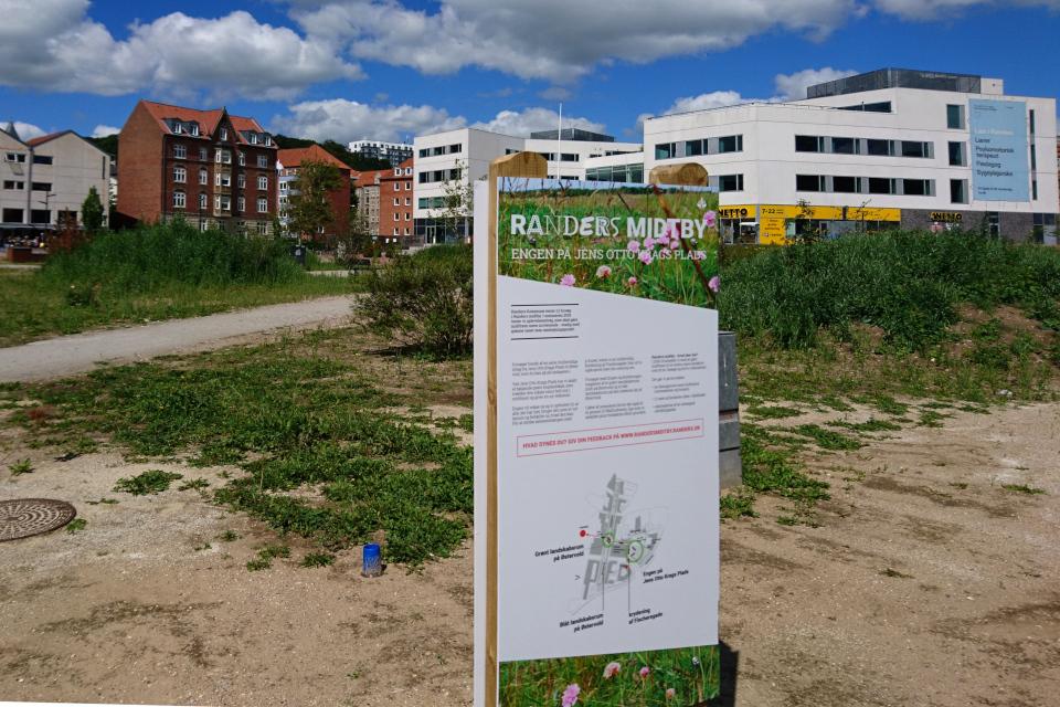 Карта с описанием нового подхода в городском озеленении города, Дания