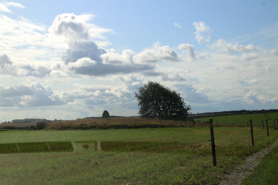 Курган посреди поля, на котором расположена могила Гамлета