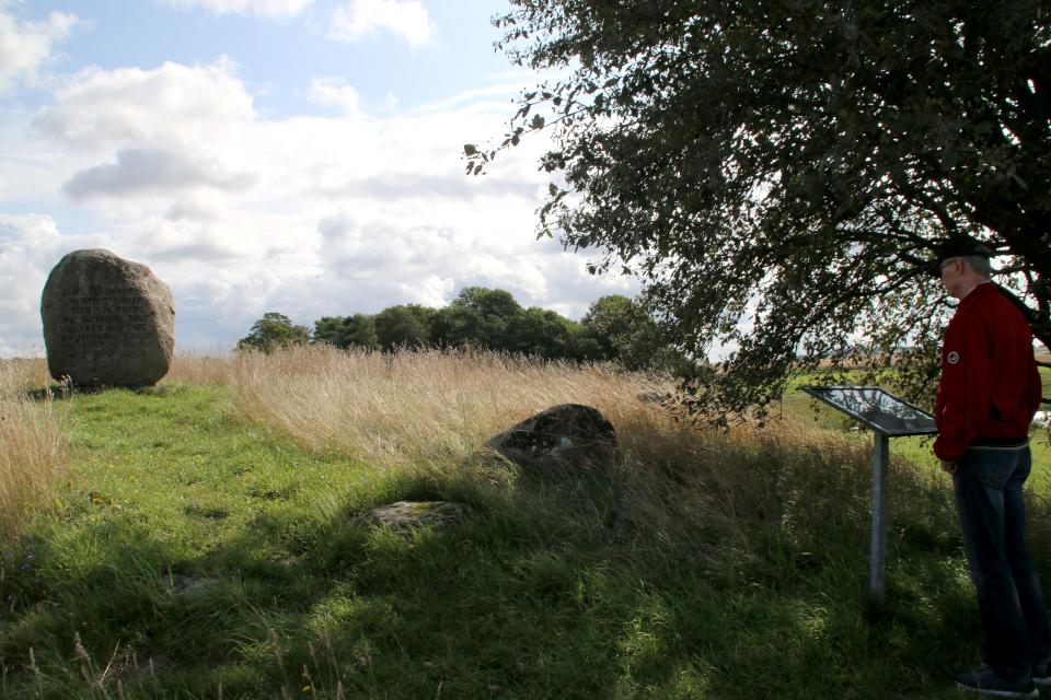 Большой гранитный камень на вершине кургана - могилы Гамлета