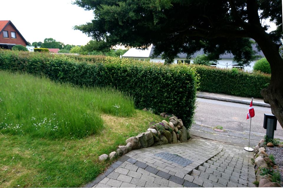 Полускошенный газон в саду моих соседей. Фото 3 июн. 2019, г. Хойбьяу / Højbjerg, Дания