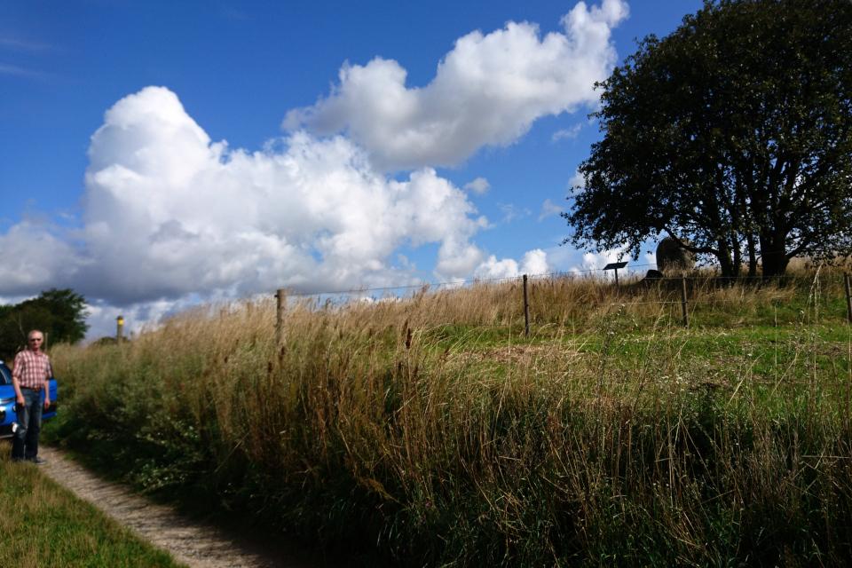 Грунтовая дорога посреди поля, проложенная возле кургана с могилой Гамлета