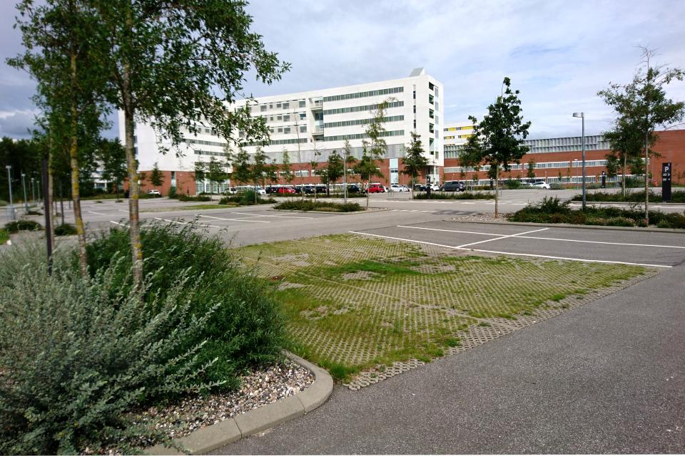 Плитки с дырками для травы на парковках,Университетская больница г. Орхуса