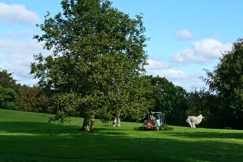 Скашивается трава на газоне со скульптурами перед дворцом Марселисборг