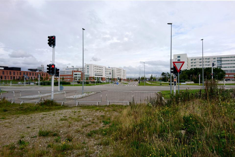 Вид на больничный городок со стороны будущей дороги
