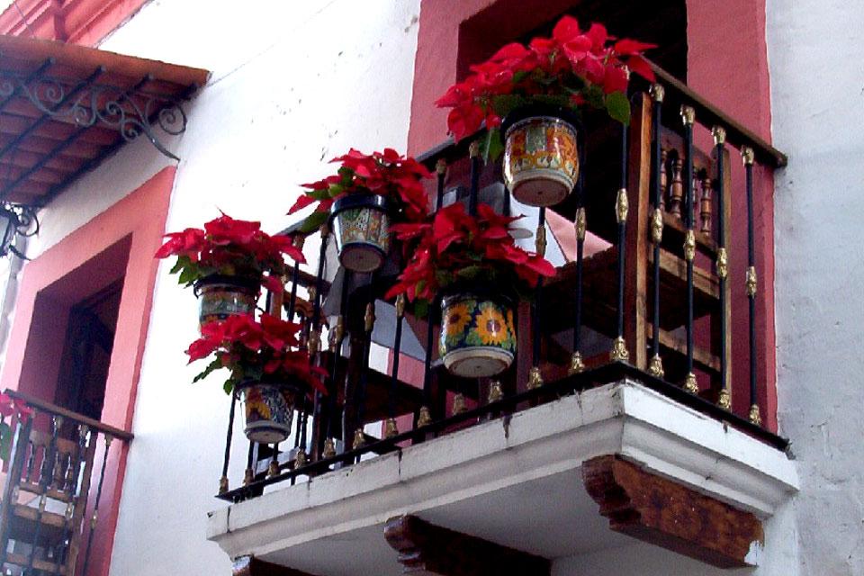 Балконы частных домов украшенные цветущими пуансеттиями, Мексика